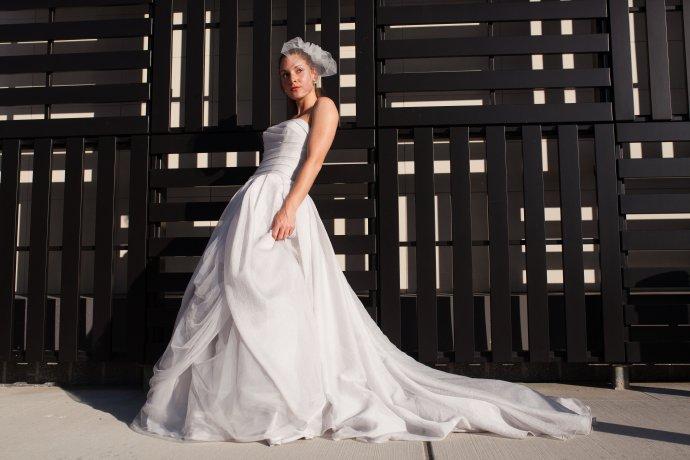 Vera wang davids bridal