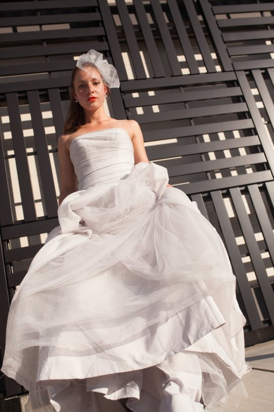 Vera wang sterling wedding dress